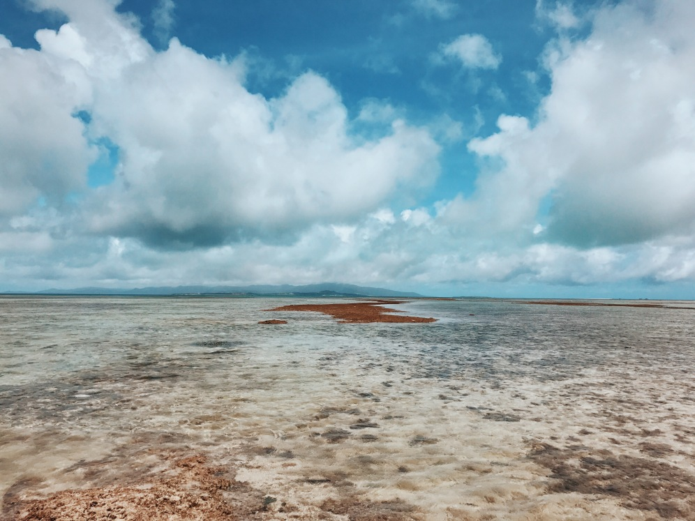 夢境裡的幻海Taketomi-jima | Göngōng Kouples | Gongong Kouples (@gongongkouples)